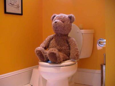 Toilet Teddy